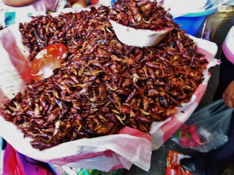 We had heard about this regional delicacy…deep fried grasshoppers!  Evidently they are supposed to be full of lead, so the Mexican government has banned them.  Obviously some vendors still sneak them into markets.  The guy carrying these around got pretty fussy with me for snapping this photo. No, we didn't try them.