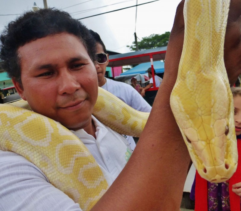 Besides all the food courts, there was a carnival atmosphere to the town with lots of side shows going on. This albino boa and its handler were visiting from a reptile rescue center nearby…