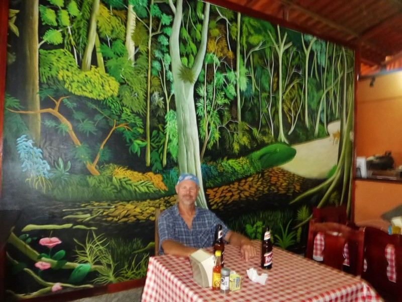 We had a pizza dinner in this open air restaurant along the river in Sierpe. The cool mural was enhanced by the rain hammering on the tin roof, and the lightning reflecting off the river enhanced the tree growing out of my head.
