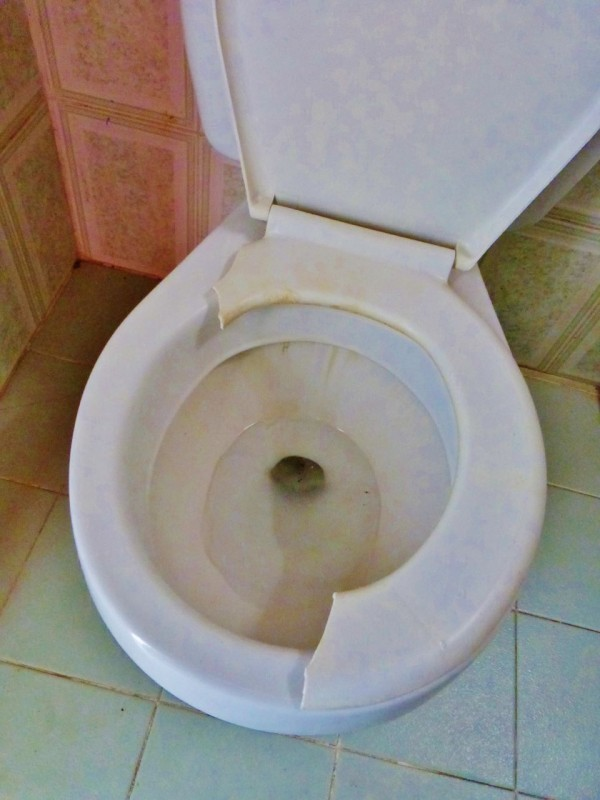 Things just keep improving since Central America.  We now have half -toilet seats instead of no-toilet seats!