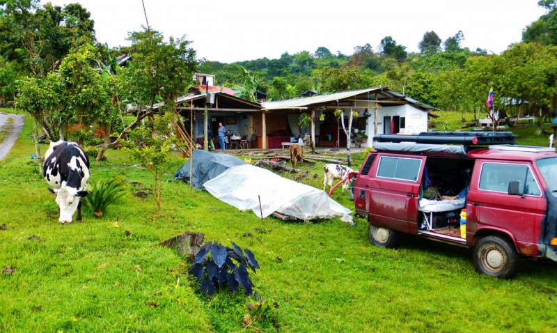 Sharing the farm with the cows.  We camped in this farmer's front yard in San Agustín.