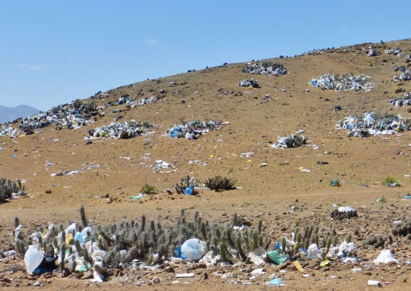 Leaving Huasco, we could see that garbage is a universal problem.