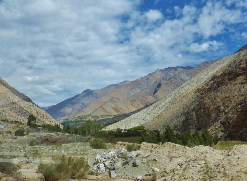 Sebastian had suggested that we visit the Valle de Elqui, which is a lush, river valley known for growing the grapes used to make Pisco.  Pisco is a brandy-like liquor and is widely enjoyed in Peru and Chile in a drink called a Pisco Sour.