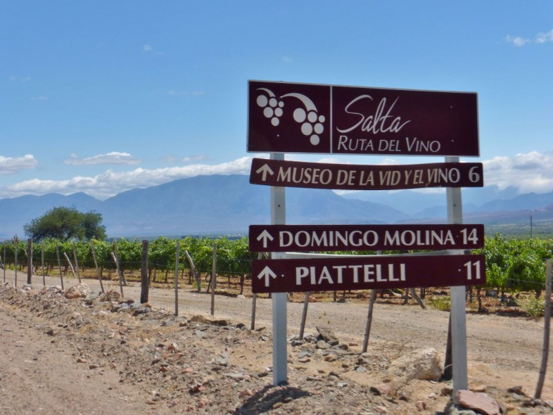 As many of you know, Argentina is famous for wine, and we found ourselves on the spectacularly scenic Ruta de Vino.