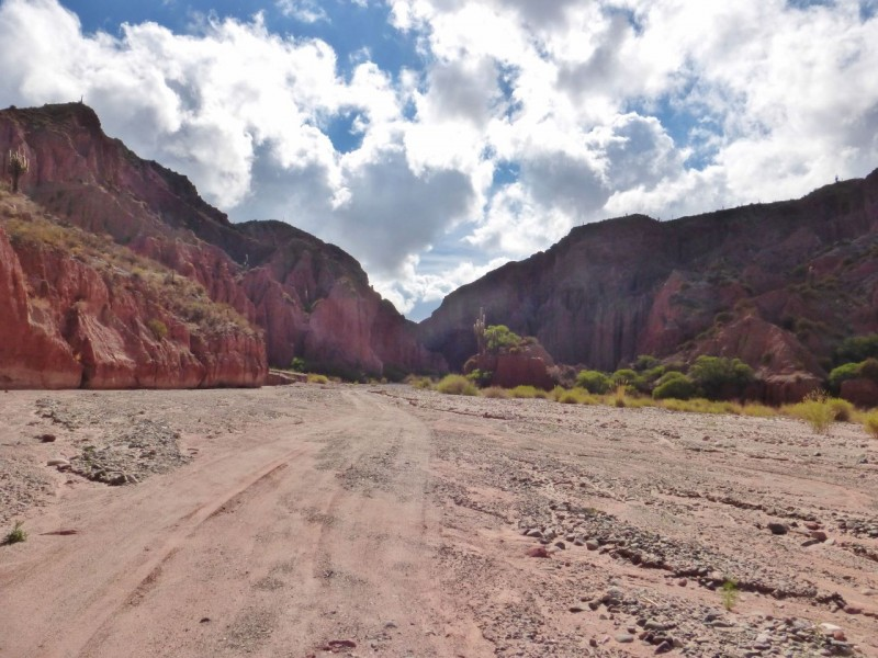 In the morning, we drove another six miles up the river bed, finding, at last, an opening to a red rock canyon.  We must be on the right track!  Unfortunately, our voltage was reading low at only 12.9, spelling a possible problem with the alternator - again!  And we were 11 miles up some desolate wash.  The anxiety of a potential rain storm and a subsequent flash flood was now added to the possibility of a dead battery.  But it sure was beautiful.  And…out on a limb is where all the fruit is, right?