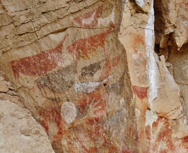 These ancient people relied heavily on the guanaco.  Archeologists believe this was painted during a time of thinning herds and depicts pregnant guanacos with the fertility symbol of the full moon.