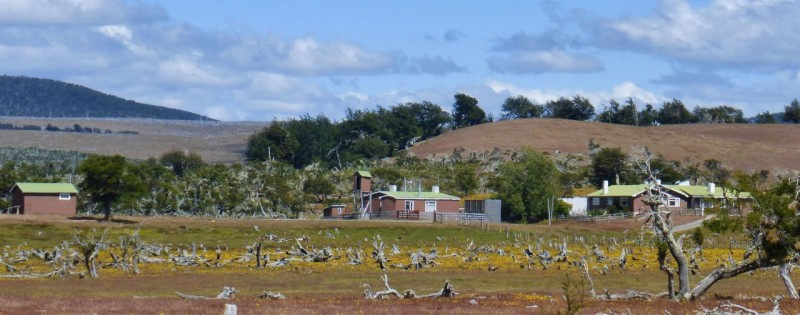 The Estancias (Ranches) in Patagonia are gorgeous.  Tidy and well kept, each ranch sported uniform colors on the roofs of their buildings.  Some roofs were bright red or yellow, some a mellow green like this one.