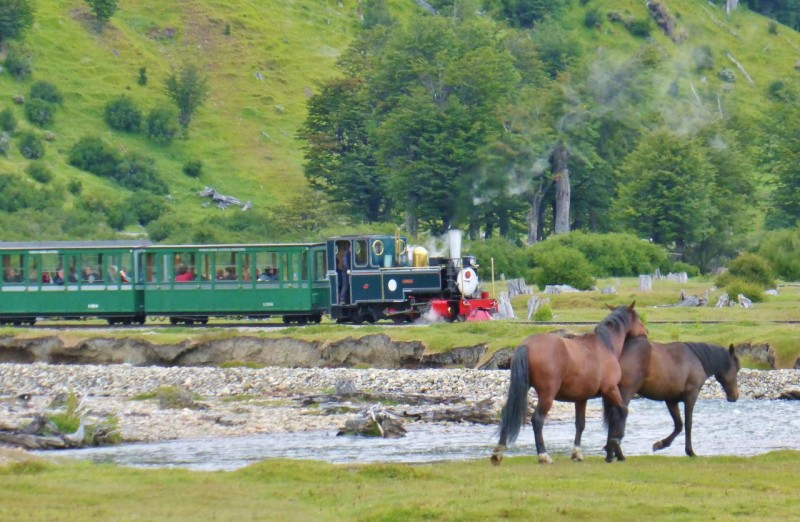 Ushuaia was infamous for its brutal prison in the early 1900's and this historic train that runs through the park was the prison train.  Now it carries happy tourists through the lovely park.        As I was trying to get this great photo of horses grazing peacefully with the train going by, the horse behind ruined my shot by nagging and pushing the other one into action.  I swear it was a dare because he finally got the other one going and I watched in amazement as they raced over the tracks right in front of the train.