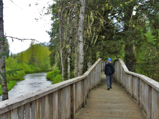 This walkway has been constructed along Fish Creek so tourists can safely view bears catching salmon in the creek. Unfortunately, we were too early in the season for the fish so there were no bears. Fortunately, there were no tourists either!