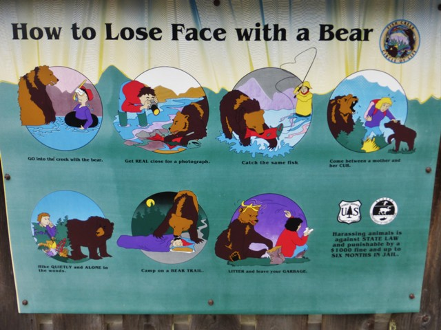 Bear rules for tourists.